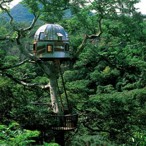 TREEHOUSE LIVING: KEEPING YOUR HEAD IN THE CLOUDS