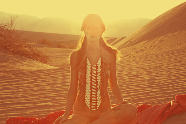 Coyote 13 by neil krug