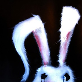 'White Rabbit' by Daniela Sarinski